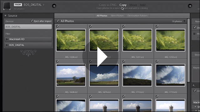 Importing and Organizing Your Images