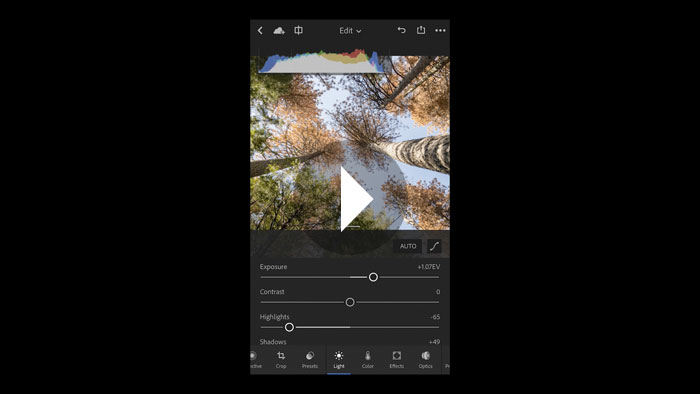 Editing in Lightroom Mobile: The Light Section