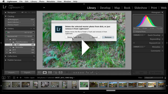 Quick Tip: Deleting Photographs in Lightroom